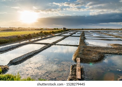 Salt marshes on the island of Noirmoutier in France.