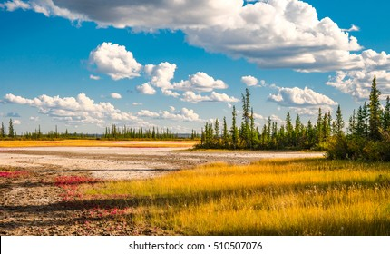 Salt Plains and blue, cloudy sky.  Wood Buffalo National Park Alberta, Canada.
