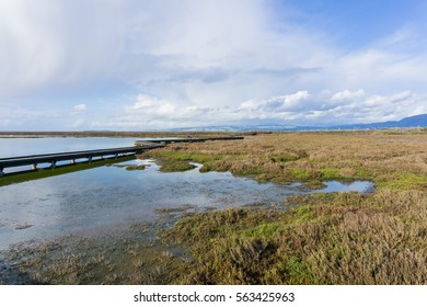 Salt ponds and marshes, Don Edwards Wildlife Refuge, south San Francisco bay, Alviso, San Jose, California