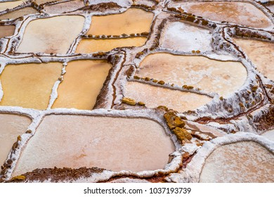 Salt Pools harvested for salt fed by a small stream by local families high in the Andes at Maras, Peru