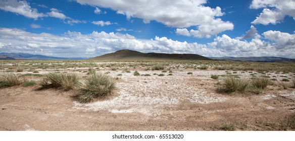Salt steppe, lifeless scorched earth