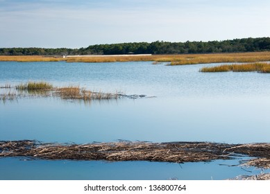 A salt water marsh in South Carolina with blue sky reflections in the water. A tranquil autumn season scene outdoors at the park. This was shot at Huntington Beach State Park in Murrells Inlet USA.