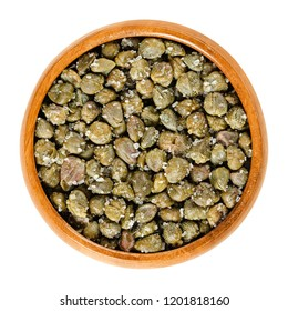 Salted capers in wooden bowl. Green, dried, pickled in sea-salt, used as seasoning or garnish. Flower buds, capparis spinosa, caper bush, Flinders rose. Macro food photo closeup from above over white.