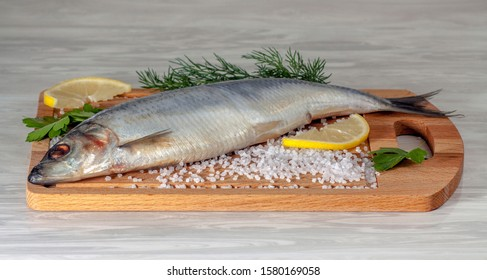 Salted herring on a cutting board in the kitchen among scattered coarse sea salt, slices of lemon and sprigs of dill and parsley. Close-up, wooden background.