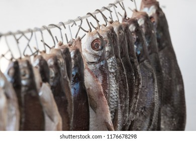 Salted river fish hung on hooks and dried in the open air, close-up