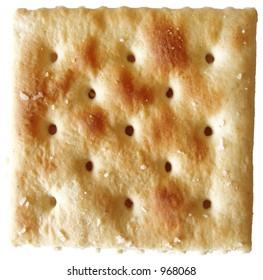 saltine cracker isolated