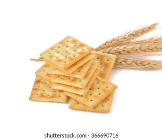 Saltine cracker  on white background