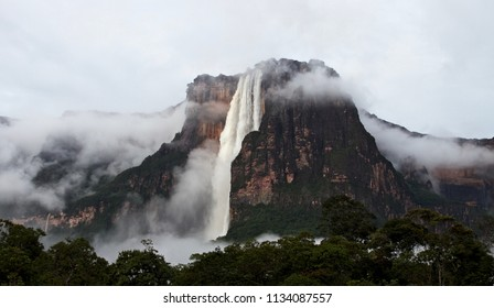 Salto Angel waterfall (Angel fall) after a rainy night. The Salto Angel is the highest waterfall in the world with 979 meter and is situated in the Canaima National Park, Venezuela.