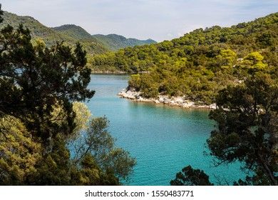 Saltwater lakes National Park on the island Mljet, Croatia. Mediterranean coast with greenery, pinetrees in the nature creating a serene calm mindfull scene. Small lake turquoise bright colored water