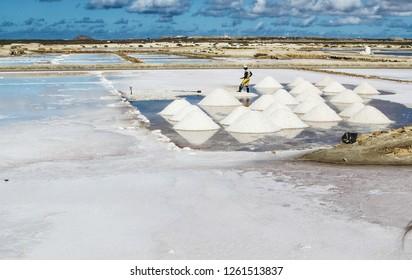 Salty Sal - Cape Verde
