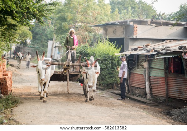 SALUNKWADI, INDIA - November 14, 2016: People daily lifestyle in rural village Salunkwadi, Ambajogai, Beed, Maharashtra, India, South East Asia.