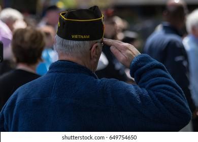 Salute of a Vietnam war veteran