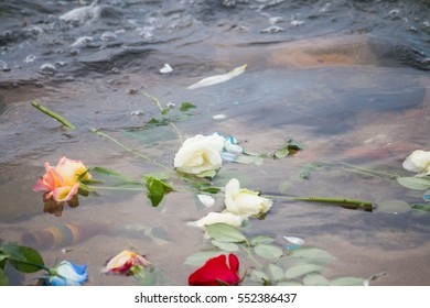 SALVADOR, BAHIA, BRAZIL - February 02, 2016 - Flowers thrown in the sea as a gift to Iemanja the Queen of the Sea