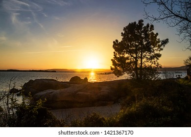 Samall beach, costal rocks and pine tree at golden sunset in Arousa Island, Galicia, Spain