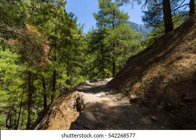 Samaria Gorge. Crete. Greece.