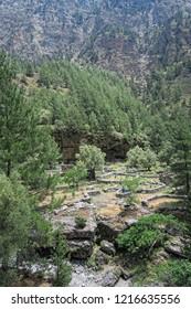 Samaria Gorge landscape at Crete, Greece. olive tree plantation of old village Samaria.