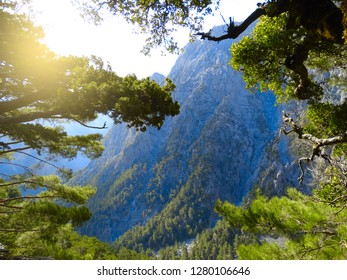samaria gorge in mountains landscape nature on Crete island
