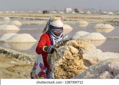 Sambhar, India - February 04, 2019: Portrait of Indian woman carrying basin with salt on her head on Sambhar Salt Lake. Rajasthan