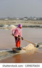 Sambhar, India - February 04, 2019: Indian woman harvesting salt on Sambhar Salt Lake. Rajasthan