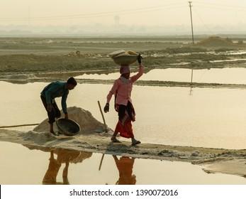Sambhar, India - February 04, 2019: Indian workers harvesting salt on Sambhar Salt Lake at morning. Rajasthan