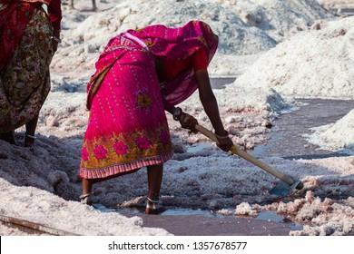 SAMBHAR, INDIA - NOVEMBER 19, 2012: Indian woman in pink dress with pickaxe mining salt at lake Sambhar, Rajasthan, India.