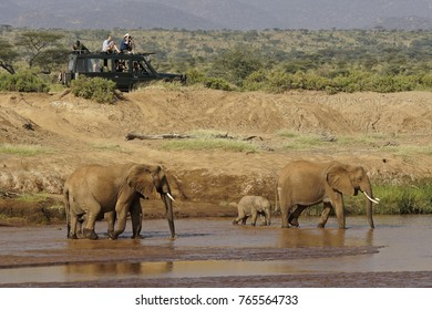 SAMBURU GAME RESERVE, KENYA, JUNE 13, 2015. Tourists on safari enjoy watching elephants at the Ewaso (Uaso) Nyiro River.