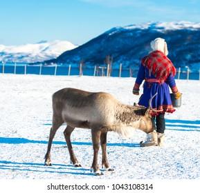 Sami reindeer herders in national dress