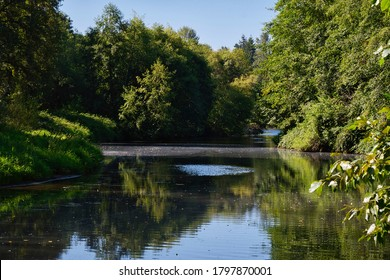 THE SAMMAMISH RIVER SURROUNDED BY LUSH GREEN TREES IN BOTHELL WASHINGTON