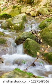 Samos island, small watercourse within the forests of Samos, in Aegean sea, Greece.