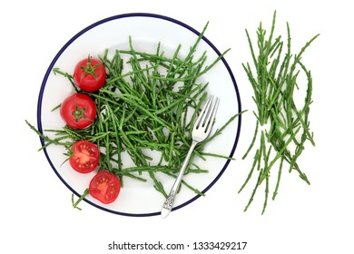 Samphire health food sea vegetable with tomatoes on a metal plate with old silver fork, high in antioxidants, fucoidans, dietary fiber and calcium. Salicornia europaea