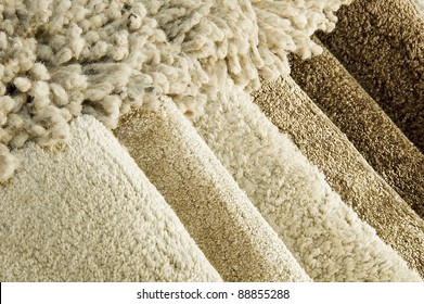 Samples of color of a carpet