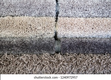 Samples of color of a carpet, gray rolls