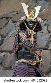 Samurai warrior posing before castle in Japan