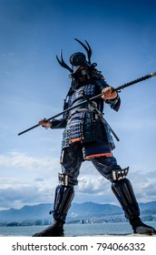 The Samurai Worrior