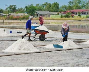 SAMUT SAKHON, THAILAND : April  6,2016 Worker is working at salt farm or Salt production is made at Samut Sakhon in Thailand.