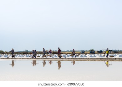 SAMUT SONGKHRAM, THAILAND - MAY 6 ,2017:  Salt farmers in Samut Songkhram Province are helping to collect the salt that has just been produced. This is the tradition of the villagers.