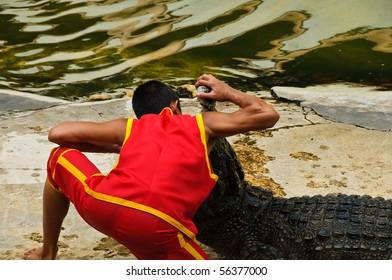 SAMUTPRAKARN, THAILAND - JUNE 11: A man puts his head in a crocodile's mouth in a crocodile show at Samutprakarn crocodile farm & zoo June 11, 2010 in Samutprakarn, Thailand.