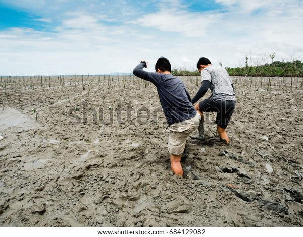 Samutsakorn Thailand, 24 July 2917: Two volunteers join together are going to plant young tree in deep mud in mangrove forest on July 24, 2017 in Samutsakorn Thailand.