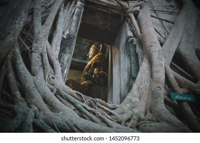 Samutsongkram, Thailand: 5 May, 2019- Bot Prok Pho at Wat Bang Kung with the golden Buddha statue inside; one of the famous historical temple built in Ayutthaya, the tree is growth through the temple
