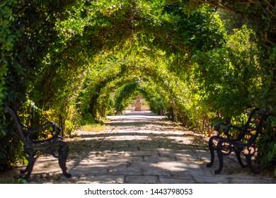 San Anton garden Malta - beautiful green arches