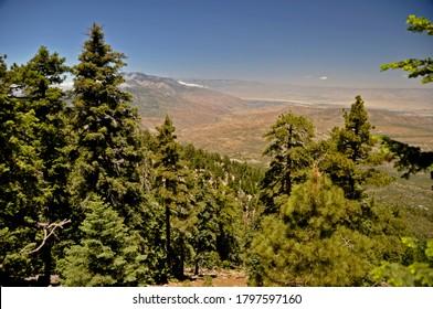 San Bernardino National Forest - Mountain San Jacinto State Park view