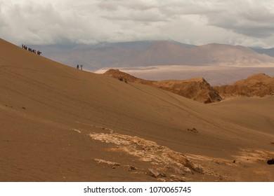 San Board in Atacama