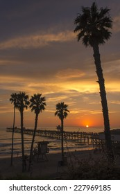 San Clemente Pier Sunset with Palms