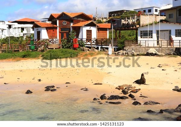 San Cristobal Island Galapagos Islands Ecuador Stock Photo