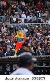 SAN DIEGO - APRIL 11: The Famous Chicken watches the home opener at PetCo Park April 11, 2010 in San Diego, CA
