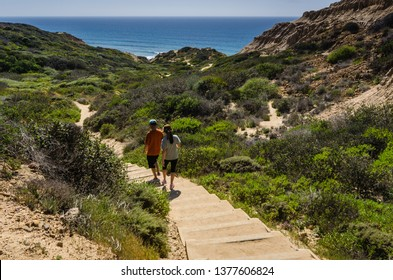 San Diego, CA / USA - 03/19/2015: Torrey Pines State Natural Reserve includes maritime chaparral, the rare Torrey pine, miles of unspoiled beaches, and a lagoon that is vital to migrating seabirds.