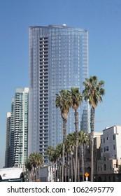 SAN DIEGO, CALIFORNIA - DEC 1, 2017 - Palm trees and tall skyscrapers of downtown San Diego, California