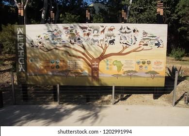 SAN DIEGO, CALIFORNIA - DEC 2, 2017 -Tree illustrating species of Africa,  San Diego, California