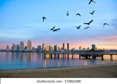 San Diego city scape at dawn with seagulls flying in the foreground