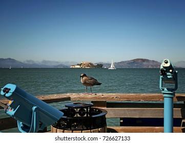 San Francisco Bay Boardwalk Bird Alcatraz Island Sail Boat Sea Fog